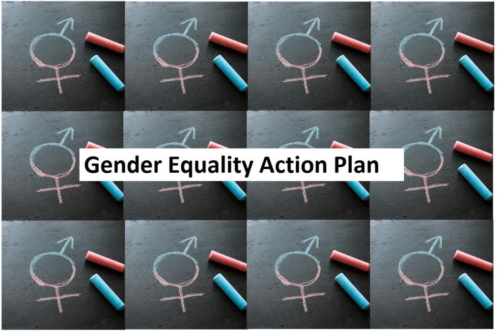 Gender Equality Action Plan image